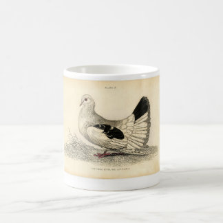 Classic Zoological Etching - Dove Coffee Mug