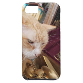 Claude iPhone 5 Covers