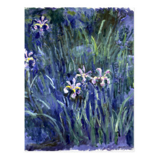 Claude Monet: Irises Postcard