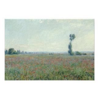 Claude Monet - Poppy Field Photo Print