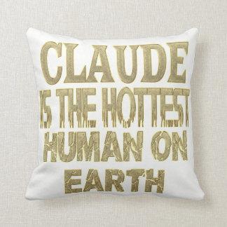 Claude Pillow