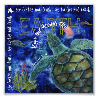 Clean Ocean Sea Turtle Art Photograph