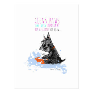 Clean Paws Scottie Dog Postcard