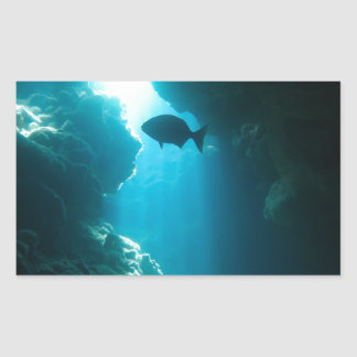 Clear blue cave and fish