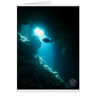 Clear blue cave and fish card