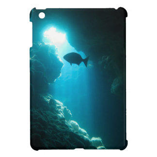 Clear blue cave and fish case for the iPad mini