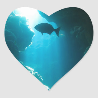 Clear blue cave and fish heart sticker