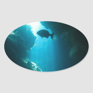 Clear blue cave and fish oval sticker