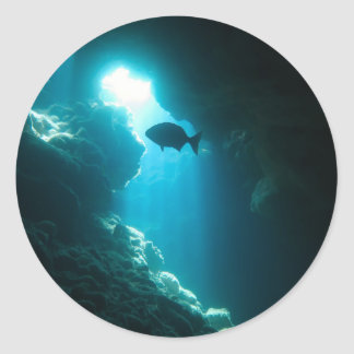 Clear blue cave and fish round sticker