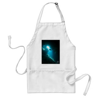 Clear blue cave and fish standard apron