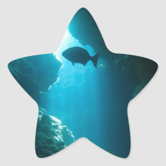 Clear blue cave and fish star sticker