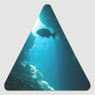 Clear blue cave and fish triangle sticker