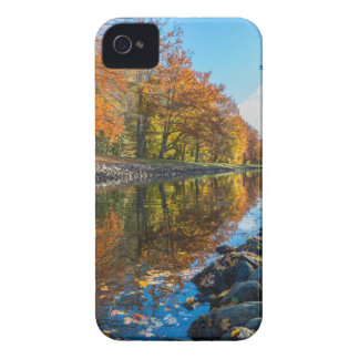 Clear Body of Water Between Yellow and Green Leave iPhone 4 Cover