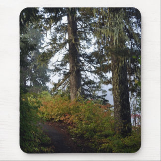 Clear Lake Hiking Trail Mouse Pad