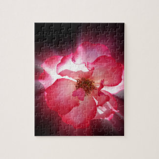 clear red petals jigsaw puzzle