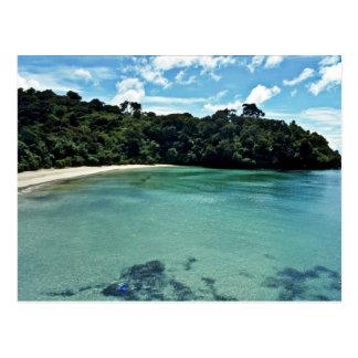 Clear Waters Of Stewart Island Postcard