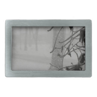 Clematis and Snow fall during a blizzard. Belt Buckles