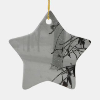 Clematis and Snow fall during a blizzard. Ceramic Ornament