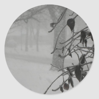 Clematis and Snow fall during a blizzard. Classic Round Sticker