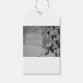 Clematis and Snow fall during a blizzard. Gift Tags