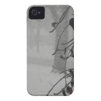 Clematis and Snow fall during a blizzard. iPhone 4 Case-Mate Case