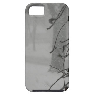 Clematis and Snow fall during a blizzard. iPhone 5 Cases