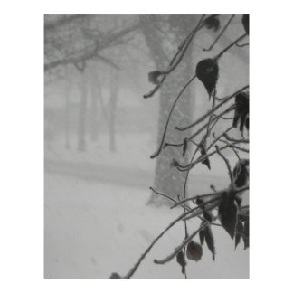 Clematis and Snow fall during a blizzard. Letterhead