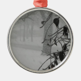 Clematis and Snow fall during a blizzard. Metal Ornament