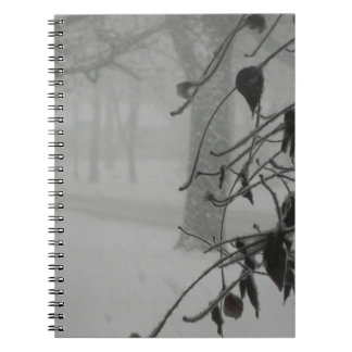 Clematis and Snow fall during a blizzard. Notebook