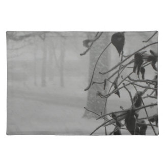 Clematis and Snow fall during a blizzard. Placemat