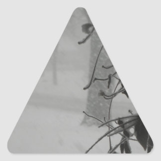 Clematis and Snow fall during a blizzard. Triangle Sticker