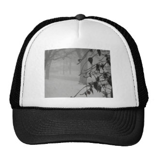 Clematis and Snow fall during a blizzard. Trucker Hat