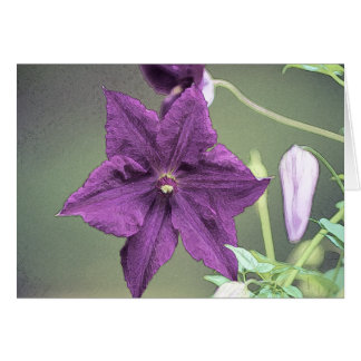 Clematis blossom greeting card