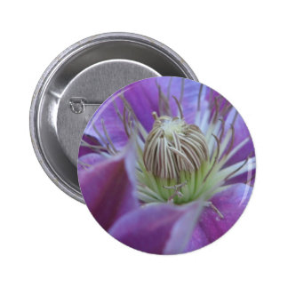 Clematis Pinback Buttons