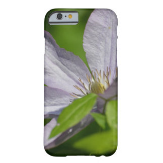 Clematis Barely There iPhone 6 Case