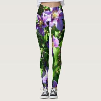 Clematis flower - leggings