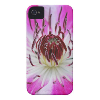 Clematis Flowers Flower Plant Garden Case-Mate iPhone 4 Cases
