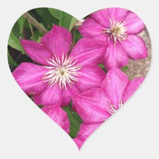 Clematis Heart Sticker