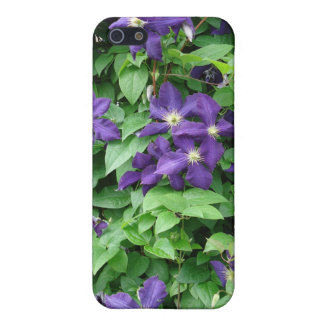 Clematis Covers For iPhone 5