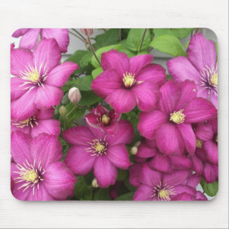 Clematis Mouse Pad