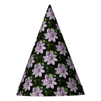 Clematis Nellie Moser Party Hat