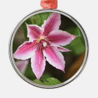 Clematis Silver-Colored Round Ornament
