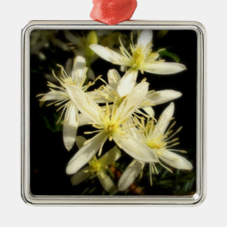 Clematis Silver-Colored Square Ornament