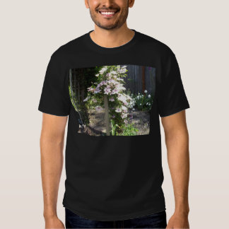 Clematis T Shirts