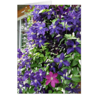 Clematis Vine, Inspirational Card