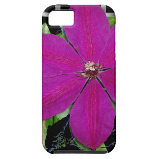 Clematis & Weave iPhone 5 Case