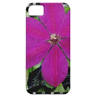 Clematis & Weave iPhone 5 Cases