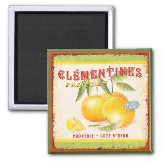 Clementines of Provence Magnet