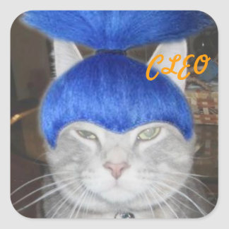 cleo with his blue wig on sticker