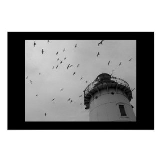 Cleveland lighthouse and gulls bw print